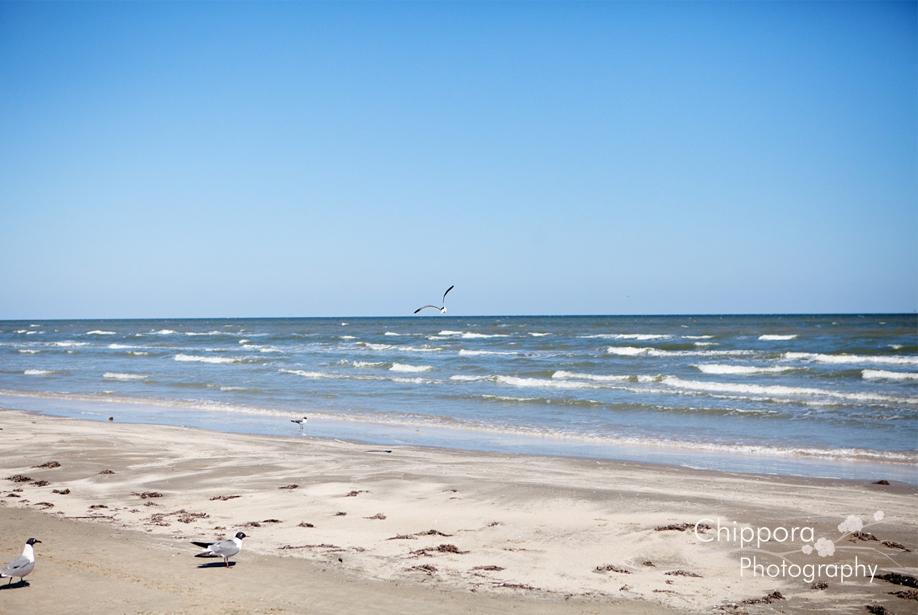 Sunny Beach Galveston Tx The Best Beaches In World
